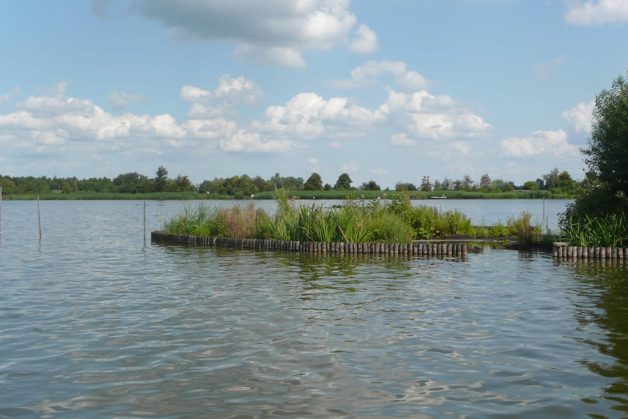 Natuur vriendelijk oeverbescherming Reeuwijkse plassen